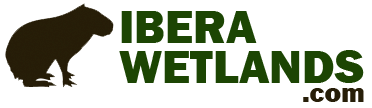 IberaWetlands.com
