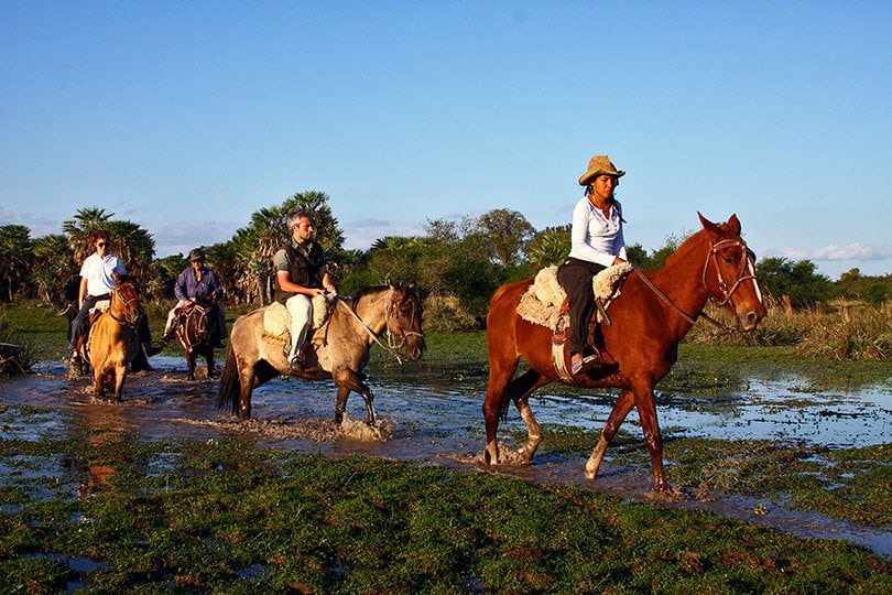 Horse Riding at Posada Ypa Sapukai